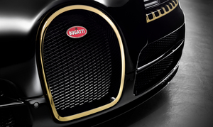 The golden horseshoe constrats with the background of the black front grille