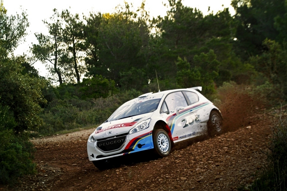 The 208 R5 is meant as a slight step down from a full WRC rally car